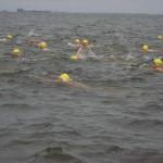 boddenschwimmen
