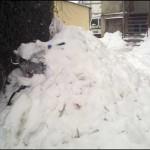 schneeraumung greifswald