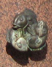 greifenbrunnen fisch