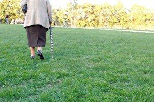 Ein Ort zum Vergreisen: Dieses Jahr werden 23 Greifswalder 100 oder älter
