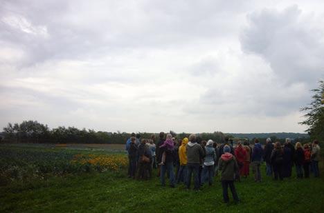 Solidarische Landwirtschaft Ernte