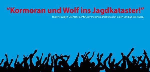 Landtagswahl 2016: Vom Kater danach
