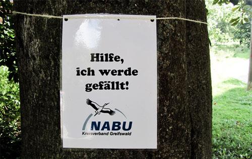 Der NABU markierte vor kurzem die bedrohten Bäume, die Stadt moniert, dass diese Auswahl falsch sei