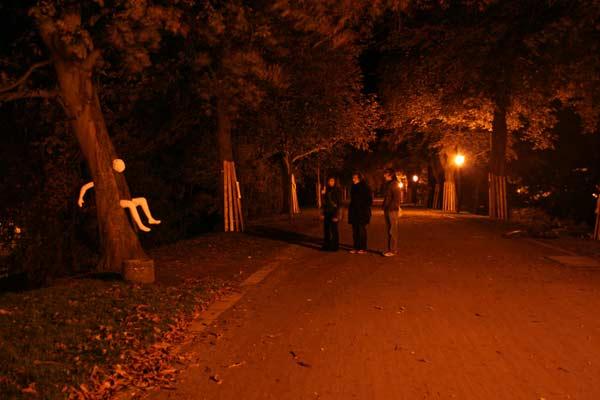 Wall nachts Greifswald